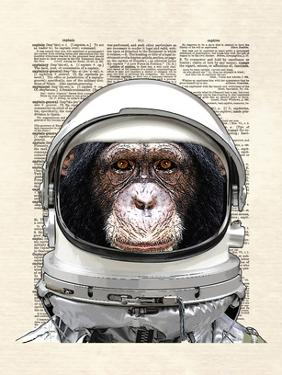Space Chimp by Matt Dinniman