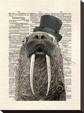 Walrus by Matt Dinniman