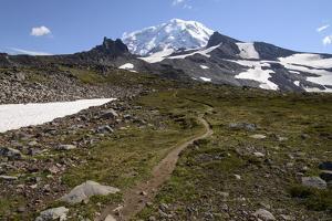 Mt. Rainier NP, Washington. View of Mt. Rainier on Spray Park Trail by Matt Freedman