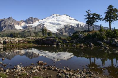 North Cascades, Washington. Mt. Baker and Reflection, on Park Butte