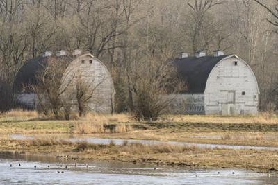Washington State. Two Barns, at the Nisqually Wildlife Refuge
