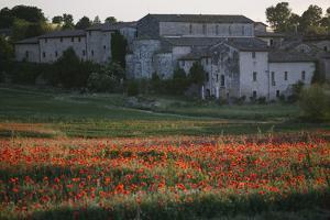 A Field of Poppies Next to a Villa in Monteriggioni by Matt Propert