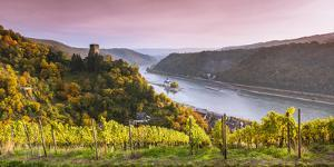 Burg Gutenfels at Sunset, Kaub, Rhineland-Palatinate, Germany by Matteo Colombo