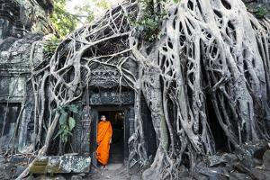 Cambodia, Siem Reap, Angkor Wat Complex. Buddhist Monk Inside Ta Prohm Temple (Mr) by Matteo Colombo