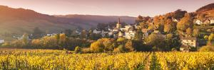 Pernand-Vergelesses and its Vineyards, Cote D'Or, Burgundy, France by Matteo Colombo