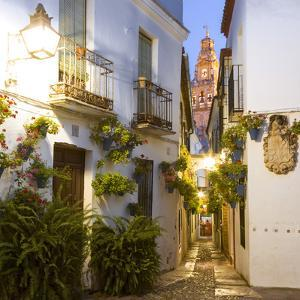 Spain, Andalusia, Cordoba. Calleja De Las Flores (Street of the Flowers) in the Old Town, at Dusk by Matteo Colombo