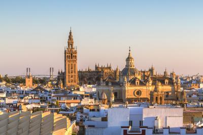 Spain, Andalusia, Seville. High Angle View of the Cathedral with the Giralda Tower by Matteo Colombo