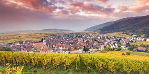 Sunset over the Vineyards Surrounding Riquewihr, Alsace, France by Matteo Colombo