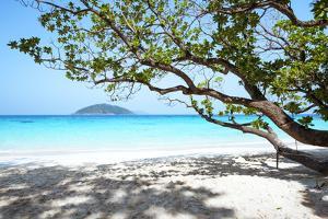 Thailand, Similan Islands. Tropical Beach on Island N.4 by Matteo Colombo