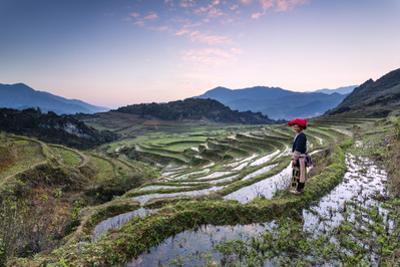Vietnam, Sapa. Red Dao Woman on Rice Paddies at Sunrise (Mr) by Matteo Colombo