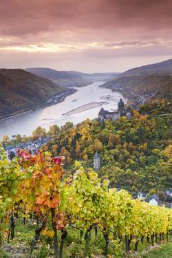 Vineyards over Bacharach, Rhineland-Palatinate, Germany by Matteo Colombo