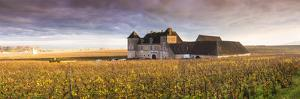 Vougeot Castle and Vineyards, Burgundy, France by Matteo Colombo