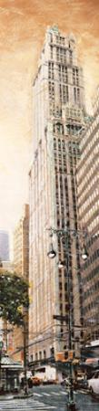 The Woolworth Building by Matthew Daniels