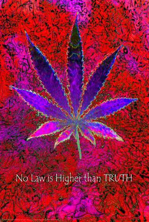 No Law Higher Than Truth by Matthew de la Tour