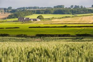 Farm House in Northumberland National Park by Matthew