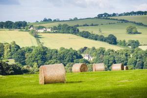 Hay Bale Landscape by Matthew