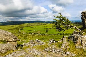 Haytor Rocks (Hay Tor), Dartmoor, Devon, England, United Kingdom, Europe by Matthew