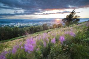 Malvern Hills at Sunset, Worcestershire, England, United Kingdom, Europe by Matthew