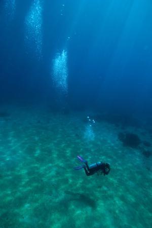 Scuba Diving by Matthew Oldfield