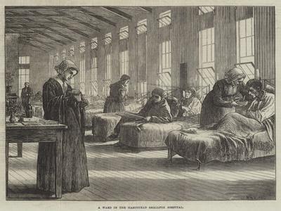 A Ward in the Hampstead Smallpox Hospital