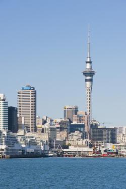 Auckland City Skyline, North Island, New Zealand, Pacific by Matthew Williams-Ellis