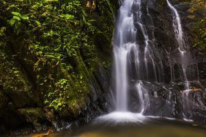 Cucharillos Waterfall in the Mashpi Cloud Forest Area of the Choco Rainforest, Ecuador by Matthew Williams-Ellis
