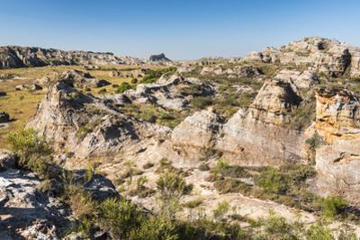 Isalo National Park, Ihorombe Region, Southwest Madagascar, Africa by Matthew Williams-Ellis