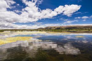 Lake Titicaca, Puno Region, Peru, South America by Matthew Williams-Ellis