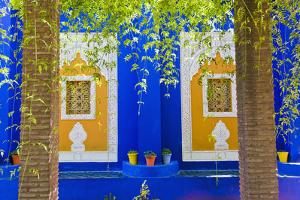 Majorelle Gardens (Gardens of Yves Saint-Laurent), Marrakech, Morocco, North Africa, Africa by Matthew Williams-Ellis