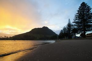 Mount Maunganui Sunset, Tauranga, North Island, New Zealand, Pacific by Matthew Williams-Ellis