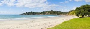 Oneroa Beach, Waiheke Island, Auckland, North Island, New Zealand, Pacific by Matthew Williams-Ellis