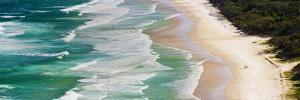 Panoramic Photo of Surfers Heading Out to Surf on Tallow Beach at Cape Byron Bay, Australia by Matthew Williams-Ellis