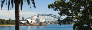 Sydney Opera House, UNESCO World Heritage Site, Sydney, Australia by Matthew Williams-Ellis
