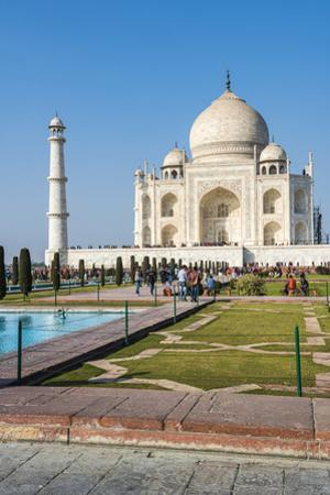 Taj Mahal, UNESCO World Heritage Site, Agra, Uttar Pradesh, India, Asia by Matthew Williams-Ellis