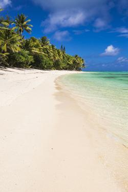 White Sandy Beach and Palm Trees on Tropical Rarotonga Island, Cook Islands, South Pacific, Pacific by Matthew Williams-Ellis