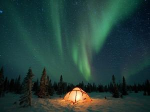 Northern Lights or Aurora Borealis over Illuminated Tent, Boreal Forest, North America by Matthias Breiter/Minden Pictures