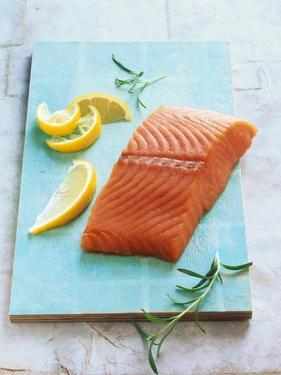 Wild Salmon Fillet with Lemon and Rosemary by Matthias Hoffmann