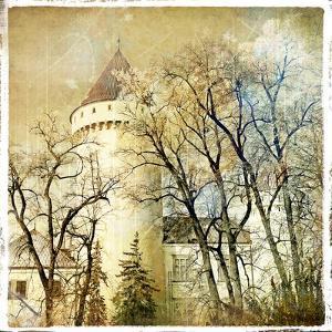 Fairy Winter Castle - Retro Styled Picture by Maugli-l