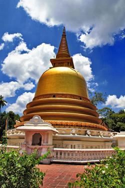 Golden Stupa in Dambulla Sri Lanka by Maugli-l