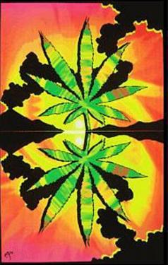 Maui Waui Pot Leaf Marijuana Blacklight Reactive Poster