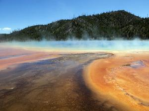 Prismatic Hot Spring in Yellowstone National Park, Wyoming by Maureen Eversgerd