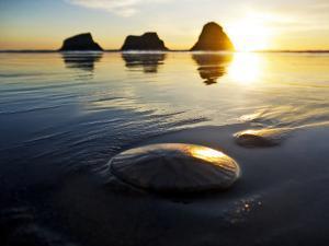 Sunset at Ecola State Park, Oregon by Maureen Eversgerd