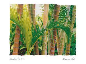 Bamboo Ballet by Maureen Love