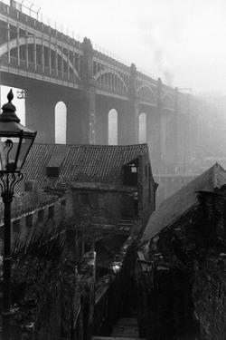Slum Houses by Maurice Ambler