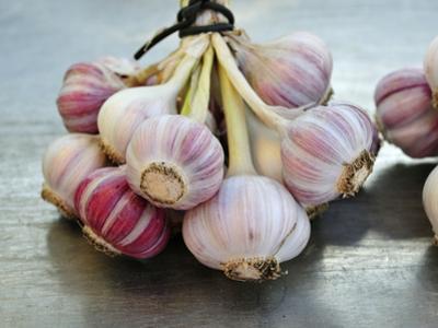 Garlic by Mauricio Abreu
