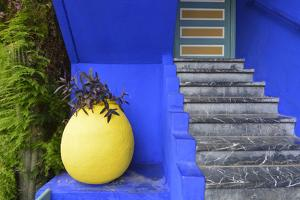 The Blue and Yellow Contrast Found in the Majorelle Garden. Marrakech, Morocco by Mauricio Abreu