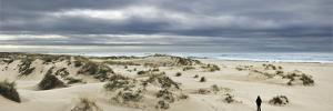 The Vast Empty Beach and Sand Dunes of Sao Jacinto in Winter, Beira Litoral, Portugal by Mauricio Abreu