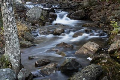 A Flowing River in Acadia National Park, Maine