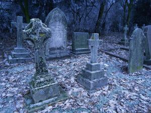 Frost on Headstones and Gravestones in a Graveyard at Ossington, Nottinghamshire, England by Mawson Mark