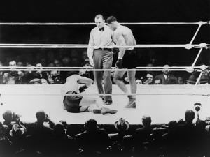 Max Baer Knocked Down During a Heavyweight Fight with Joe Louis, Sept. 24, 1935